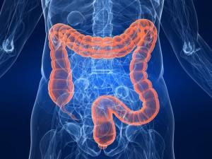 Бифиформула - надежный помощник в восстановлении кишечника