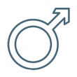 Чоловіча репродуктивна система