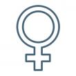 Жіноча репродуктивна система