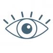 Зоровий апарат
